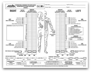 International_Stds_Diagram_Worksheet_Page_1 small